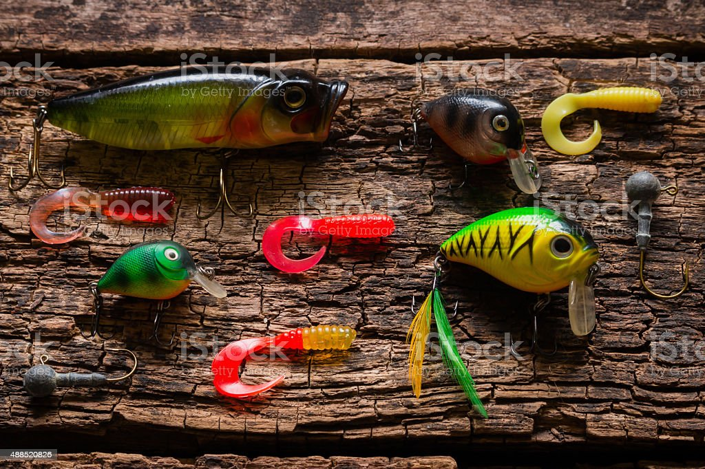 bait to catch fish on a wooden background stock photo