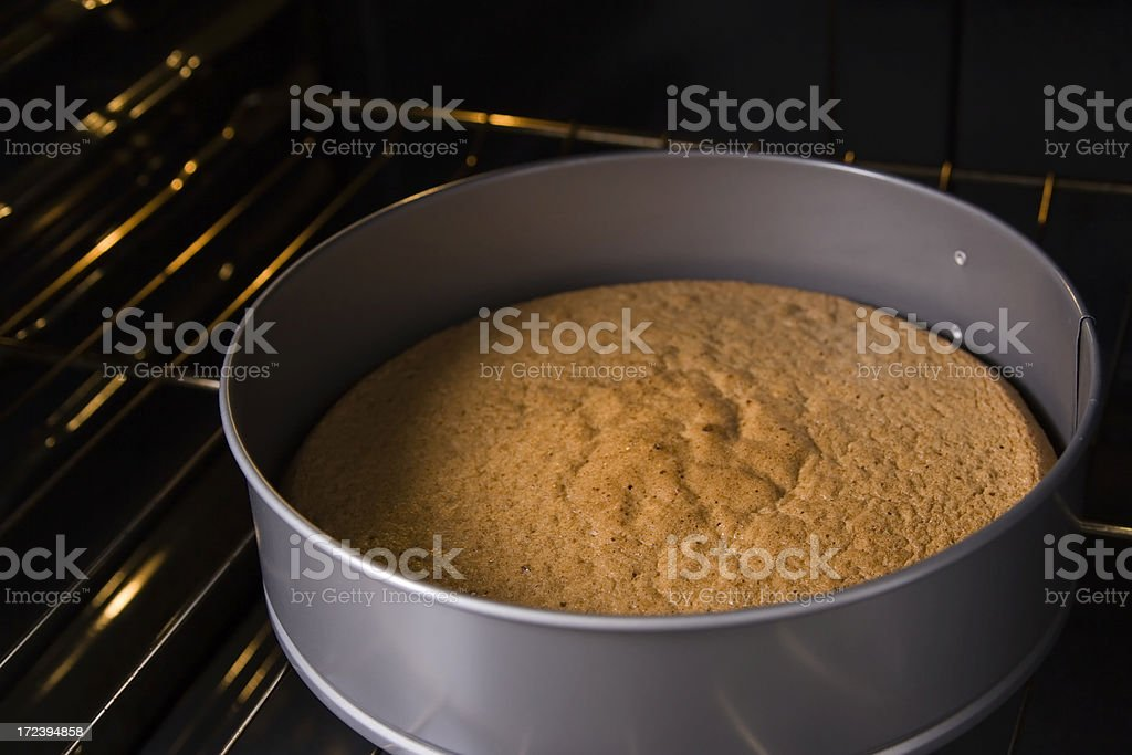 Baked biscuit cake bottom in springform stock photo