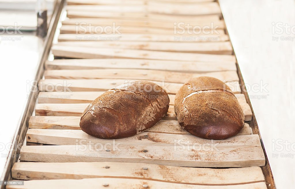 Baked Breads on the production line at the bakery royalty-free stock photo