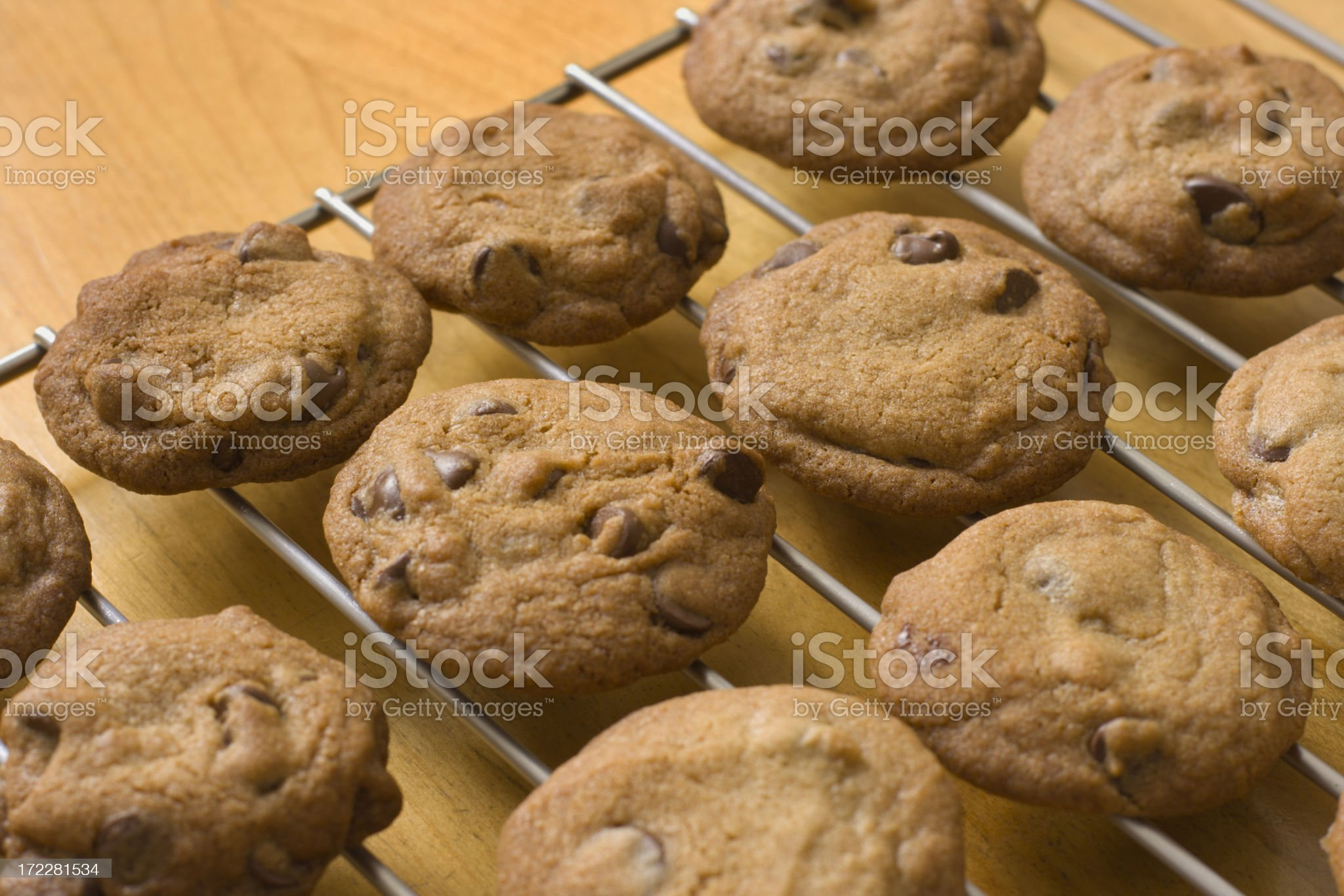 Baked Chocolate Chip Cookies, Homemade, Oven Fresh on Cooling Rack royalty-free stock photo