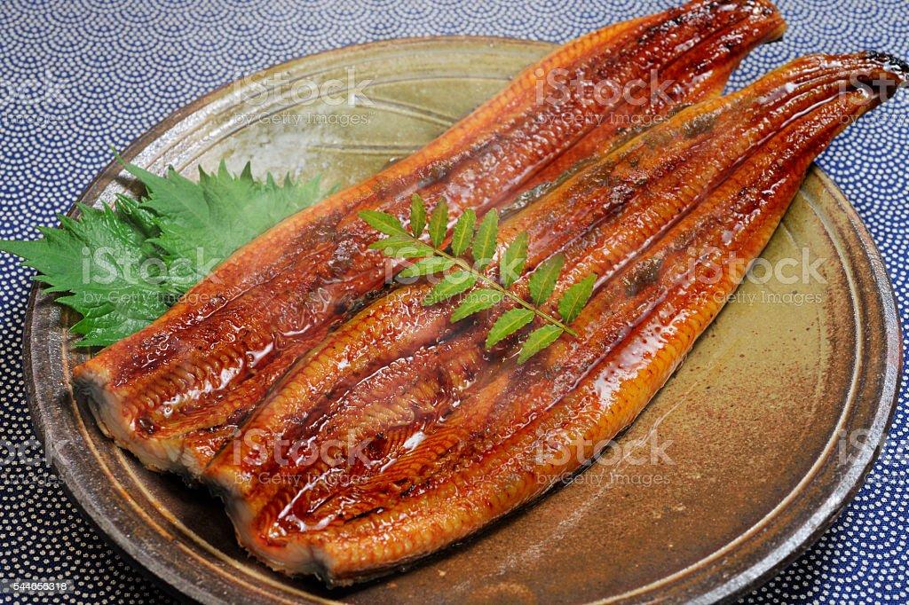 Baked eel stock photo