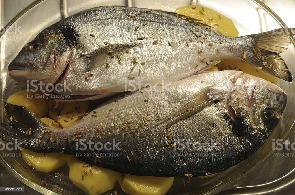 Baked Sea Bream - Italian cuisine royalty-free stock photo