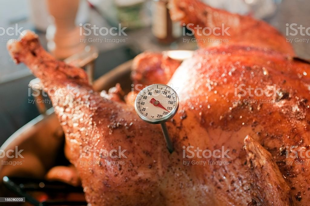 Baked Turkey with Thermometer detail royalty-free stock photo