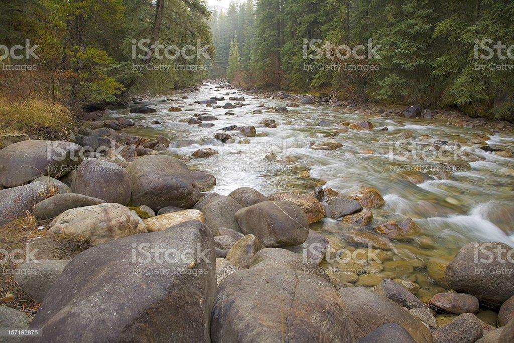 Baker Creek royalty-free stock photo