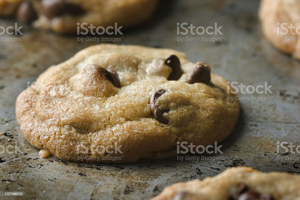 Baking Chocolate Chip Cookies royalty-free stock photo