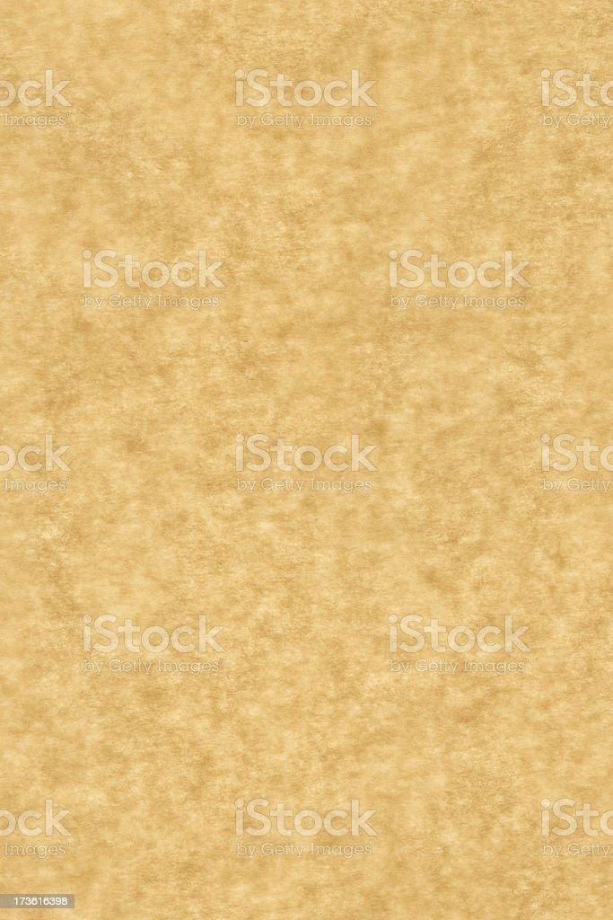 Baking Paper XXLarge stock photo