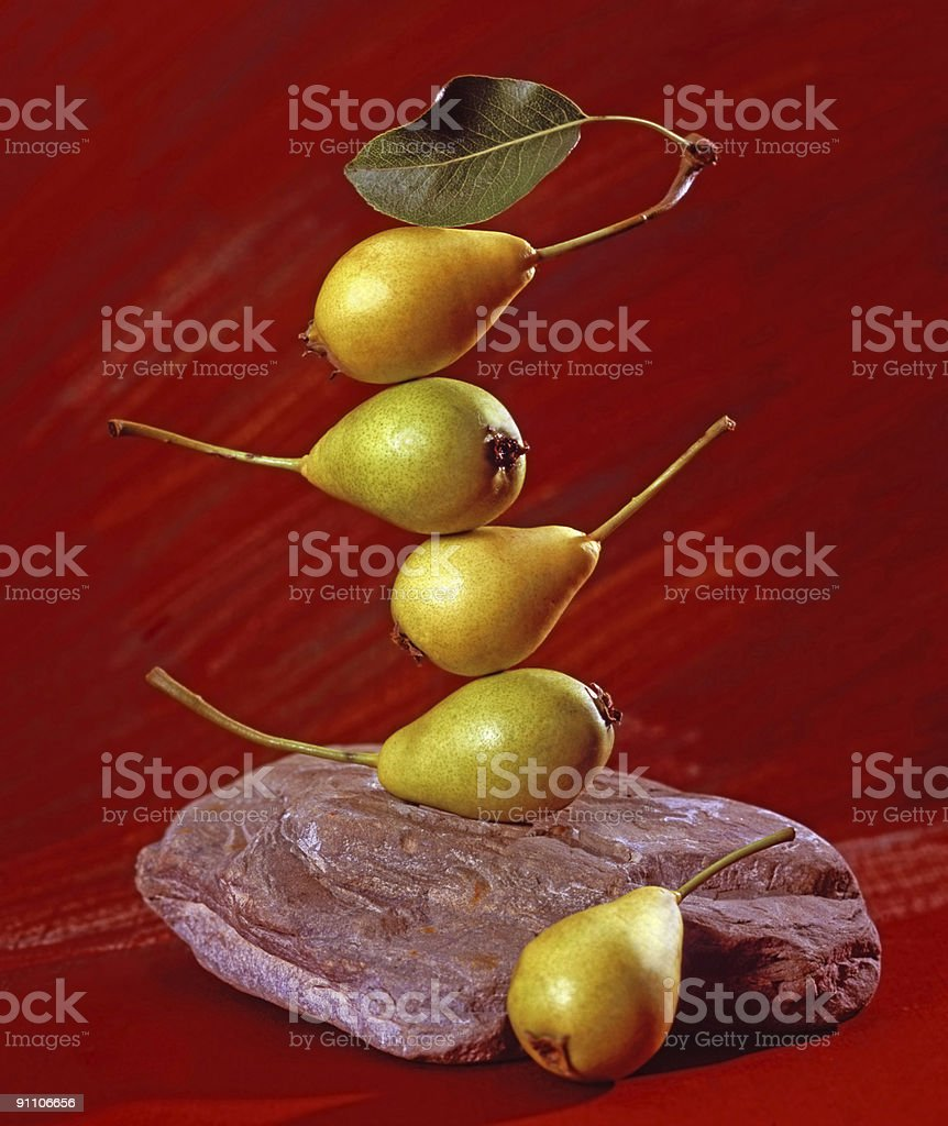 Balance Ecology royalty-free stock photo