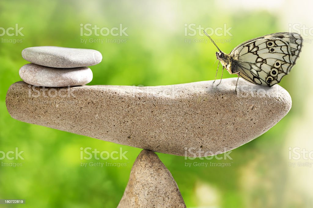 Balance in nature stock photo