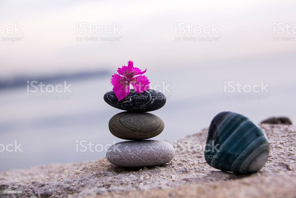 Balance of natural stones stands and wildflower. stock photo