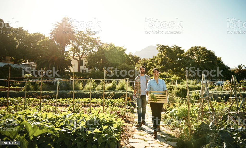 Balancing the conservation and preservation of Earth's natural resources stock photo