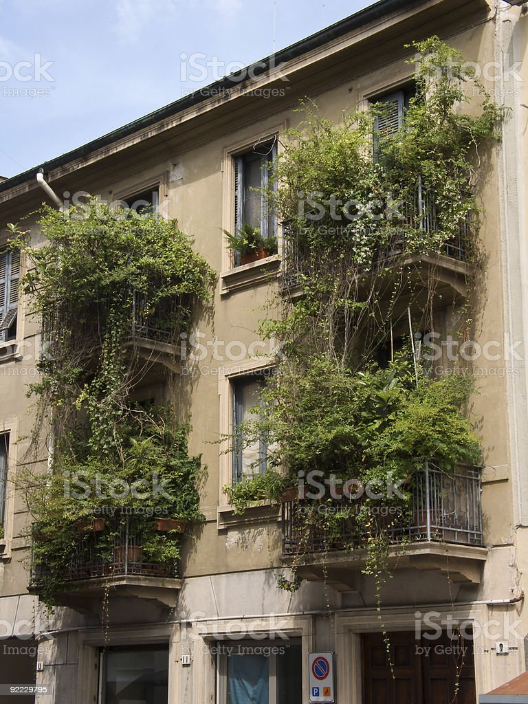 Balcony greening royalty-free stock photo