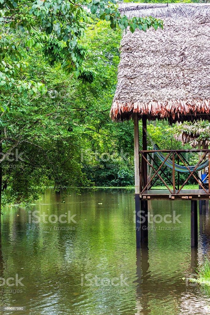 Balcony in the Jungle stock photo