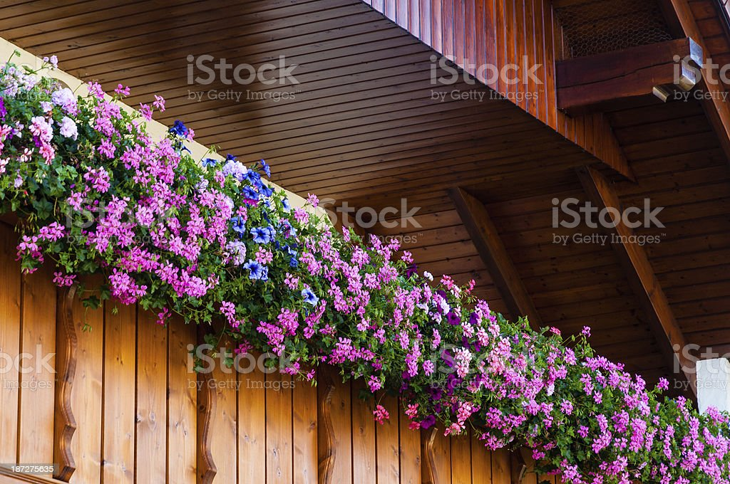 balcony with blooming flowers stock photo