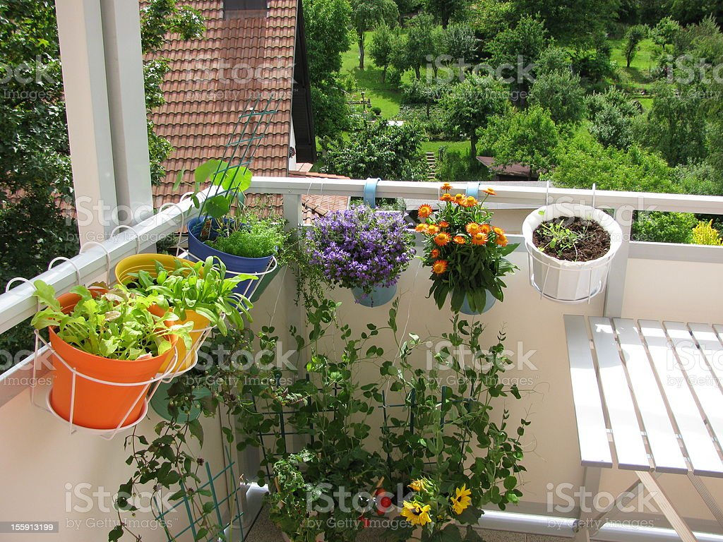 Balcony with flowers and vegetables in flowerpots stock photo