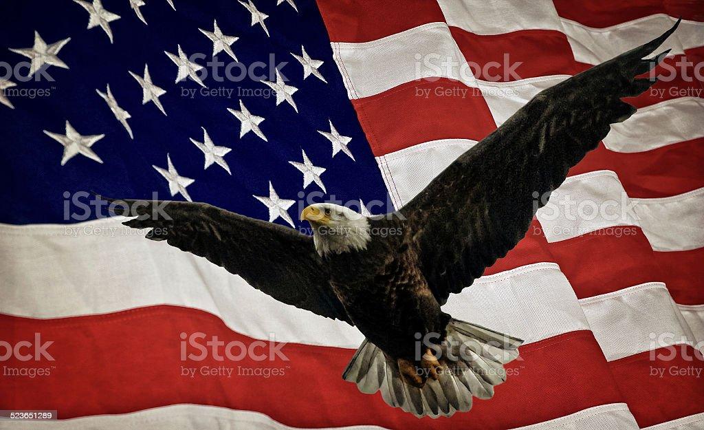 Bald Eagle and Flag stock photo