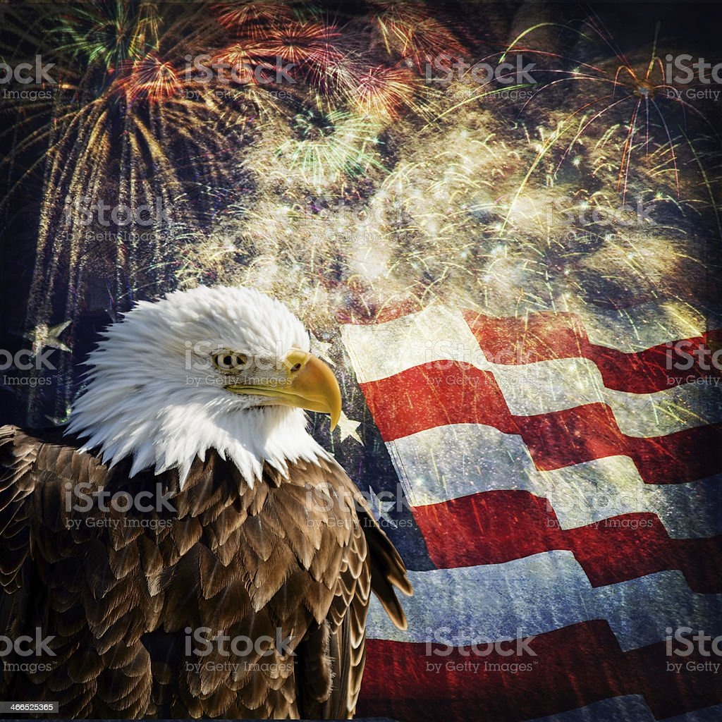 Composite photo of a Bald Eagle with a flag and fireworks in the...