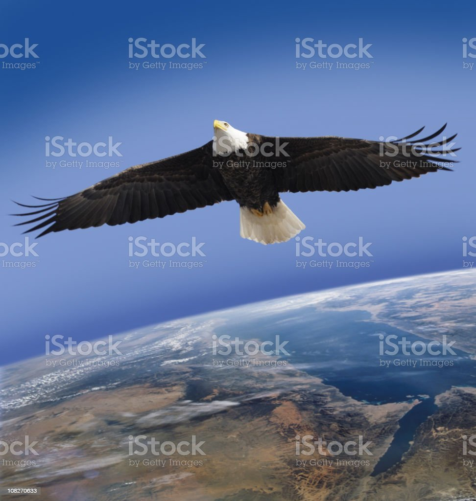 Bald Eagle, Symbol of America, Flying High Over Planet Earth royalty-free stock photo