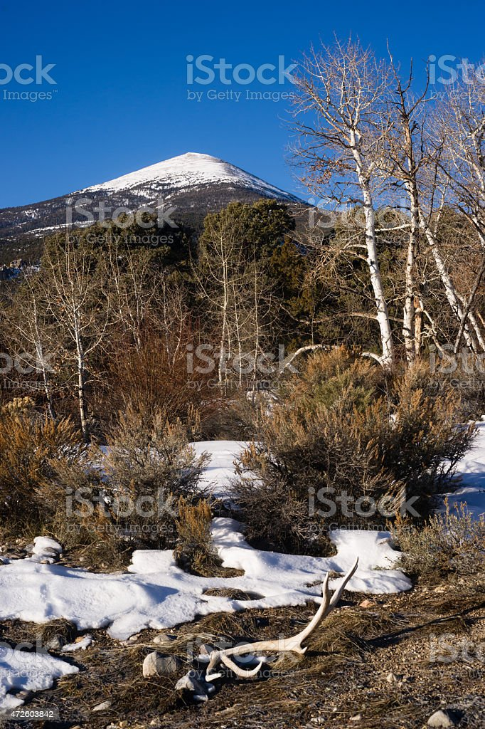 Bald Mountain Great Basin National Park Nevada United States stock photo