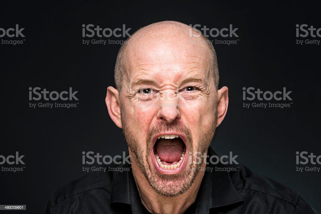 balding man screaming at camera stock photo