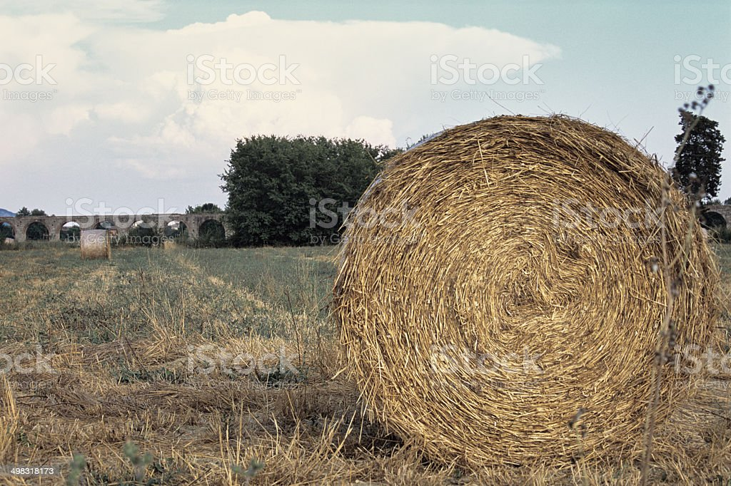 Bale in a Tuscan field stock photo