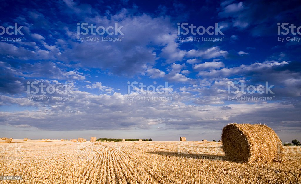 Bale in rural royalty-free stock photo