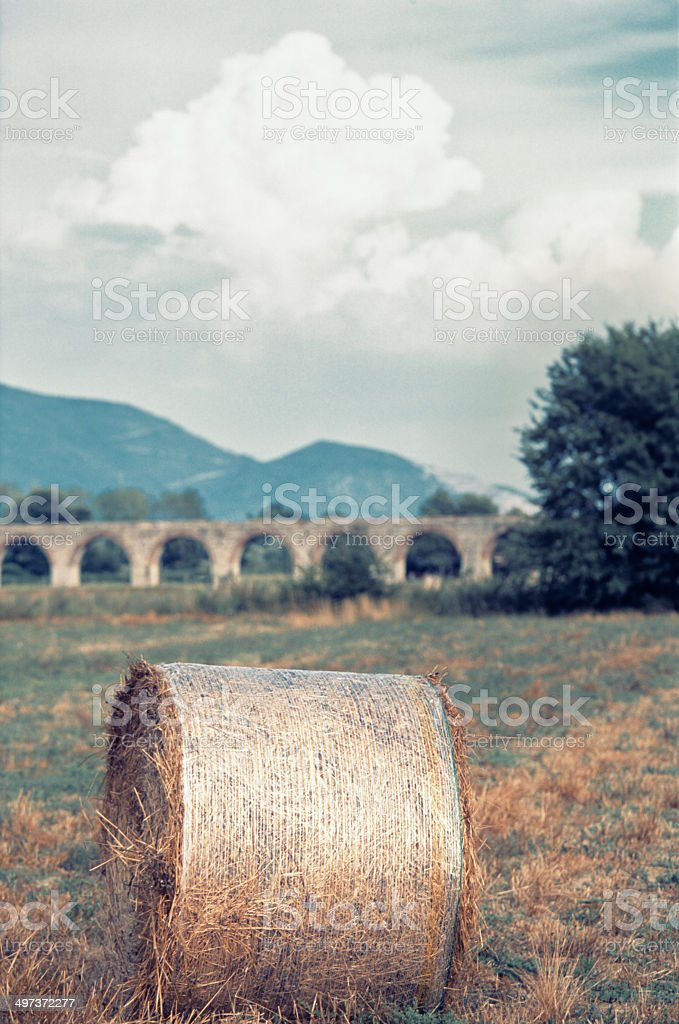 Bale in the field, Tuscan landscape stock photo
