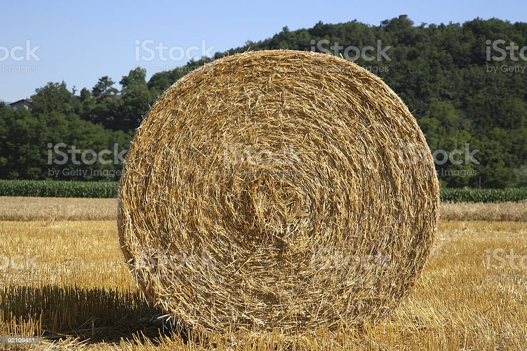 Bale of Hay on a Farm stock photo