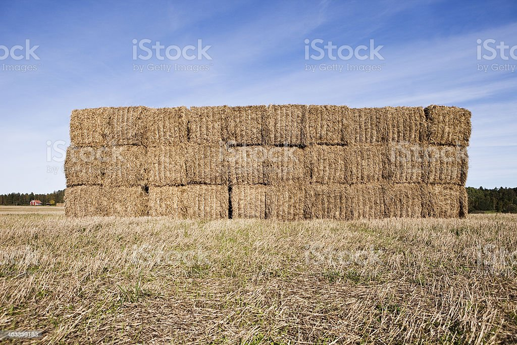 Bale of Haystack stock photo