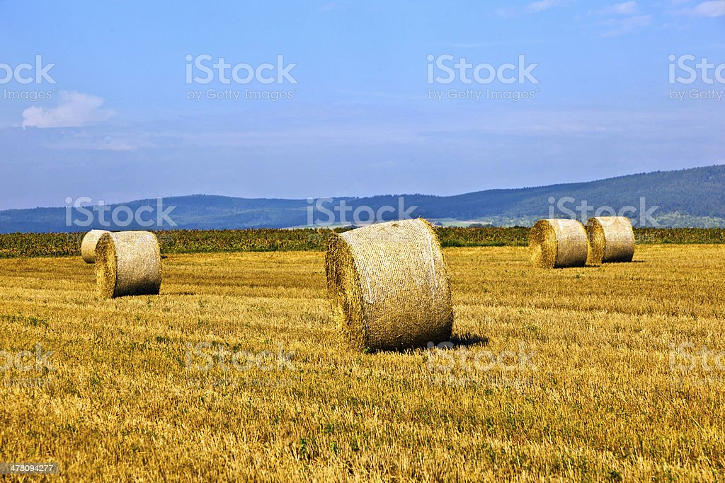 bale of straw on field royalty-free stock photo