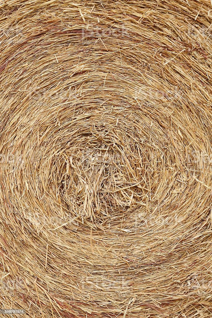 Bale of straw texture background stock photo