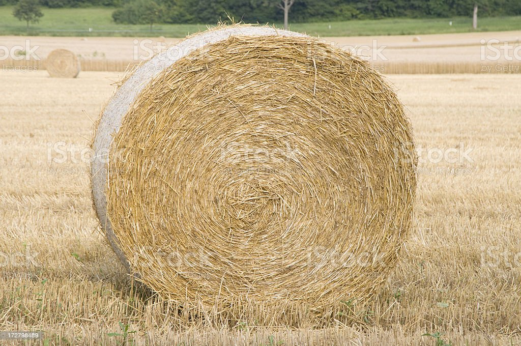 Bale royalty-free stock photo