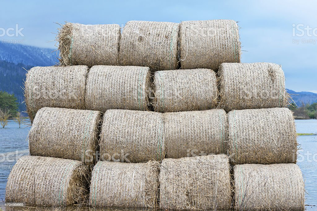 Bale Silage on Flooded Fields in Slovenia royalty-free stock photo