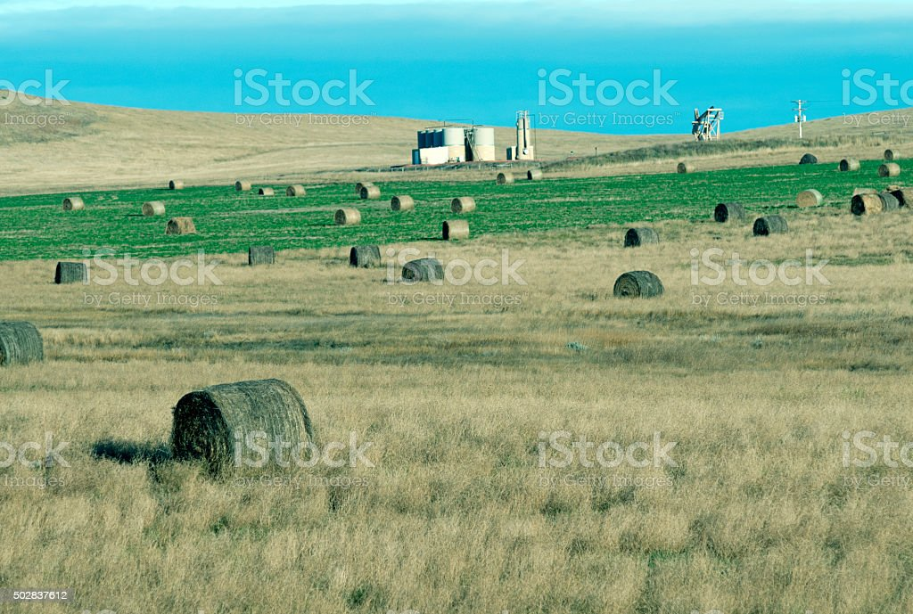 Baled hay and oil well in South Dakota stock photo
