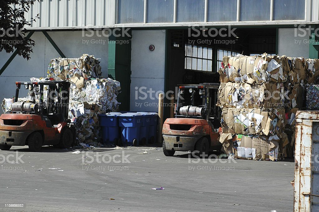 bales of cardboard and forklifts at recycling center stock photo
