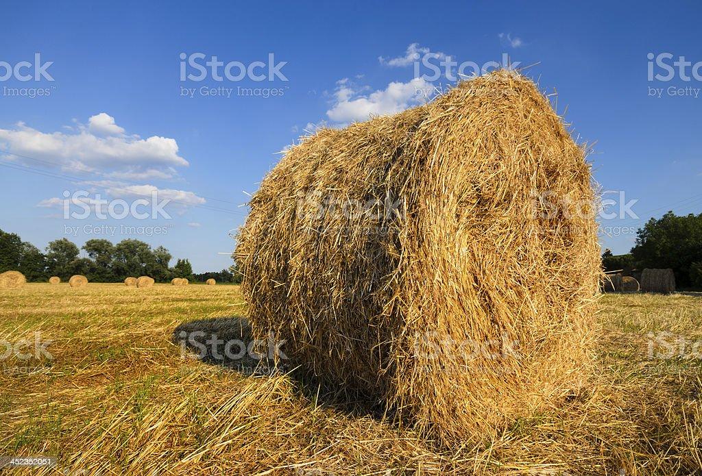 Bales of hay I royalty-free stock photo