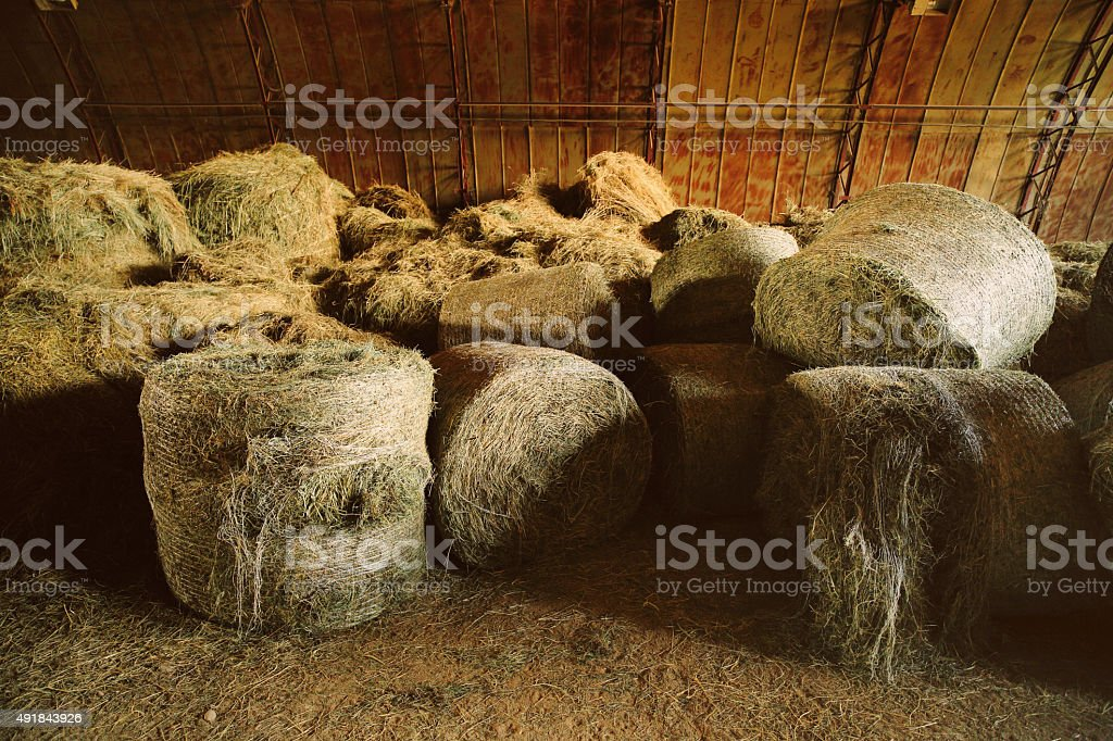 Bales of hay in old barn. stock photo