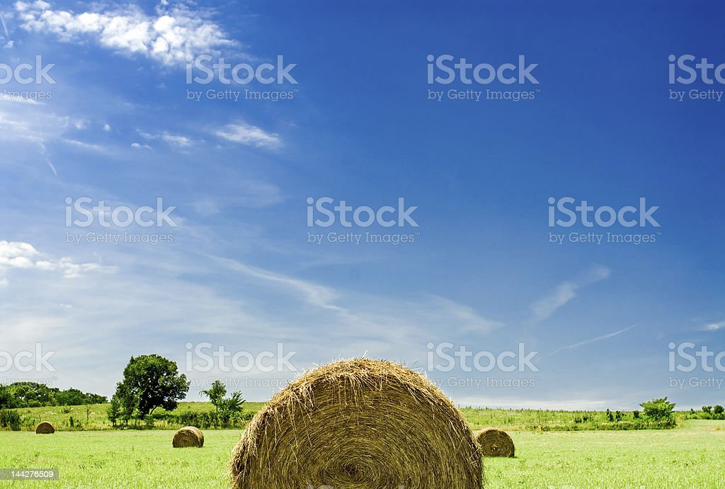 Bales of hay in the countryside stock photo