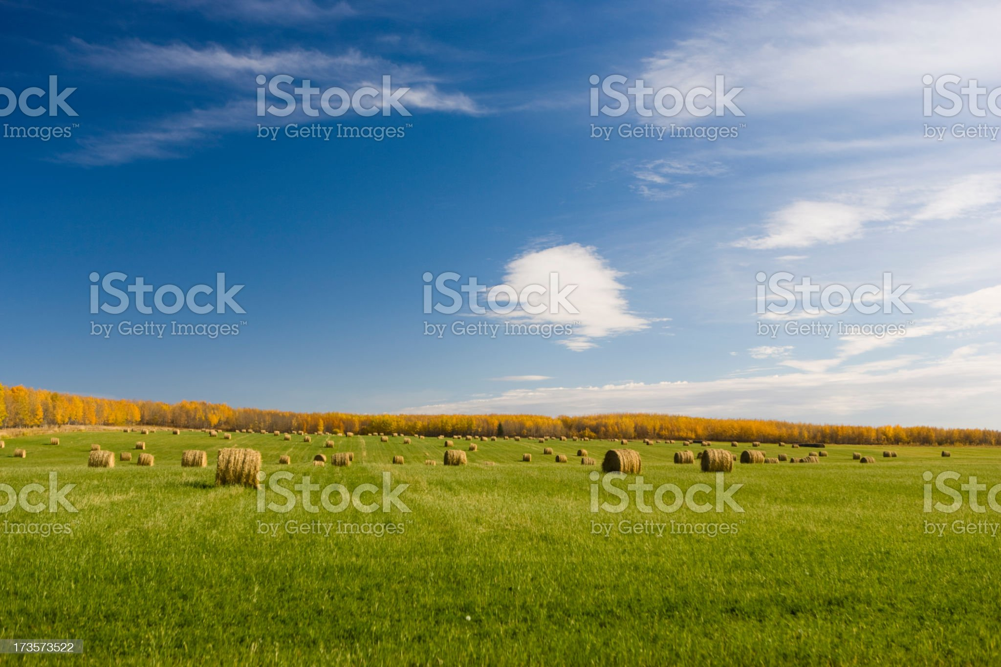 Bales of hay on a farm royalty-free stock photo