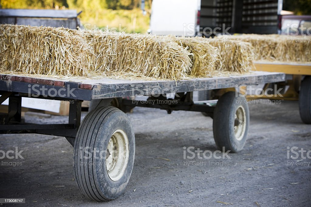 'Bales of Hay on Flatbed Truck at Pumpkin Patch, Copyspace' stock photo