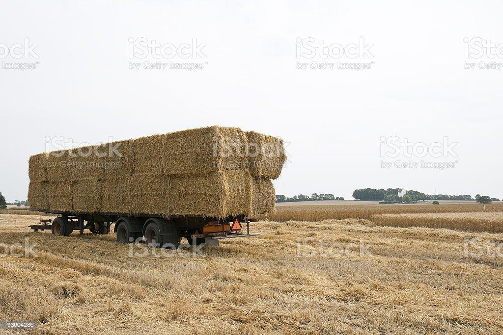 Bales of Straw stock photo