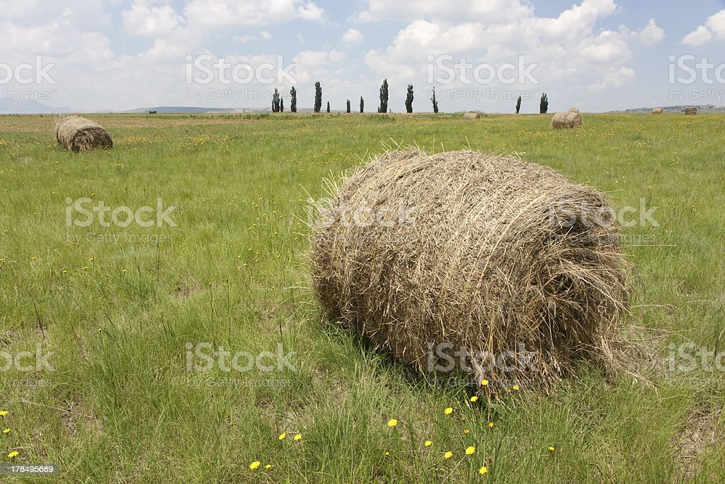 Bales on a Free State farm in South Africa royalty-free stock photo
