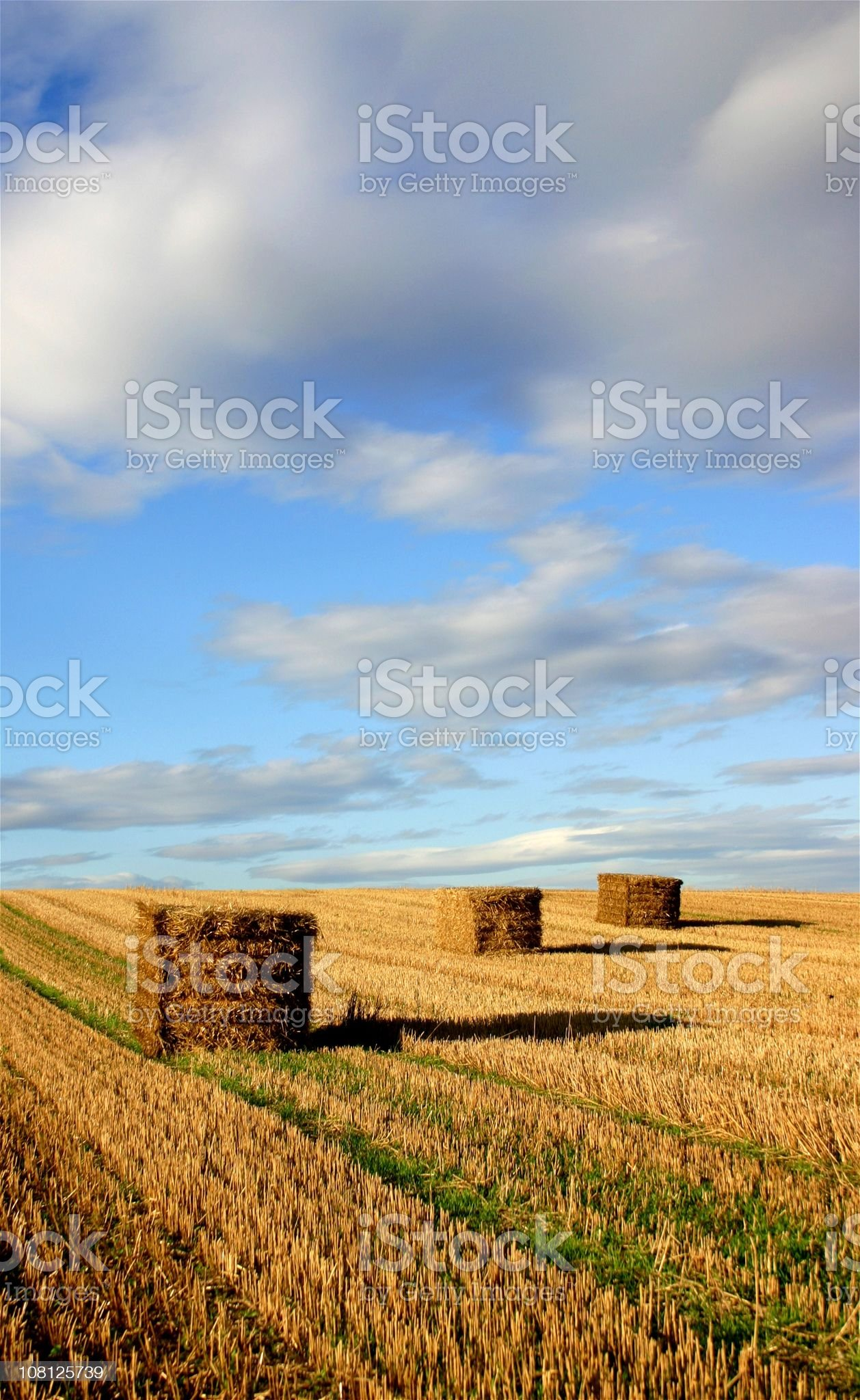bales on queue royalty-free stock photo