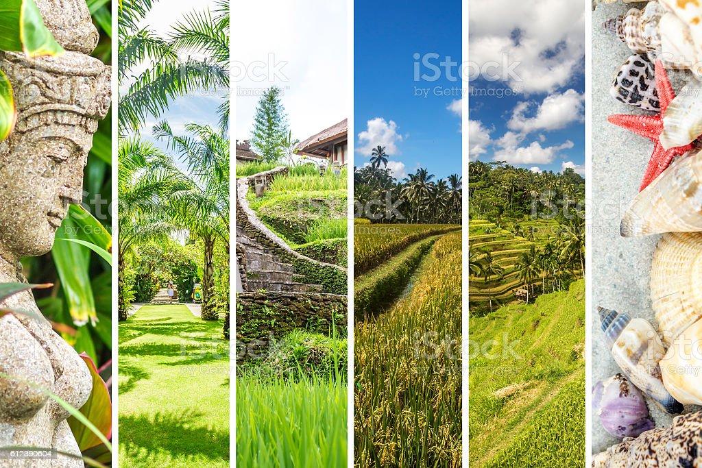 Bali collage stock photo