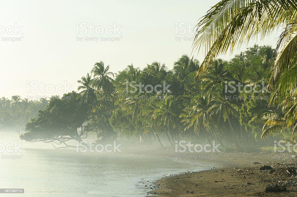 bali cost in morning fog stock photo