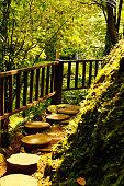 Bali Footpath in Jungle
