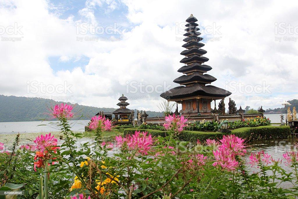 Bali, Indonesia. stock photo