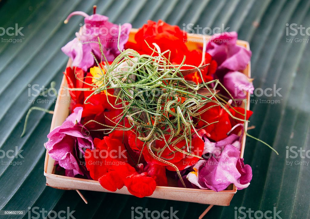 Balinese offering or Canang sari made by Balinese hindus stock photo