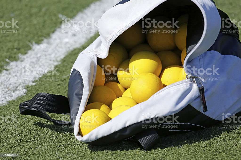 Ball Bag royalty-free stock photo