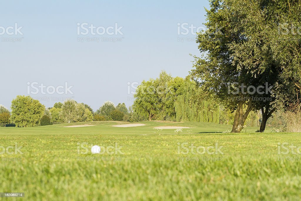 Golf ball on golf course - focus on background