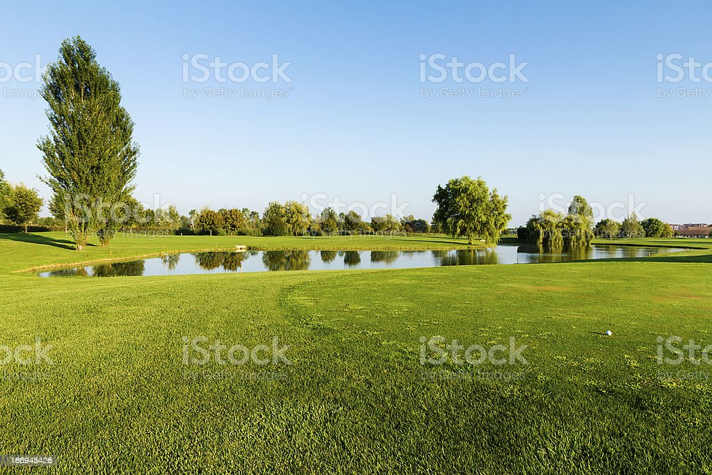 Golf ball on golf course - focus on foreground